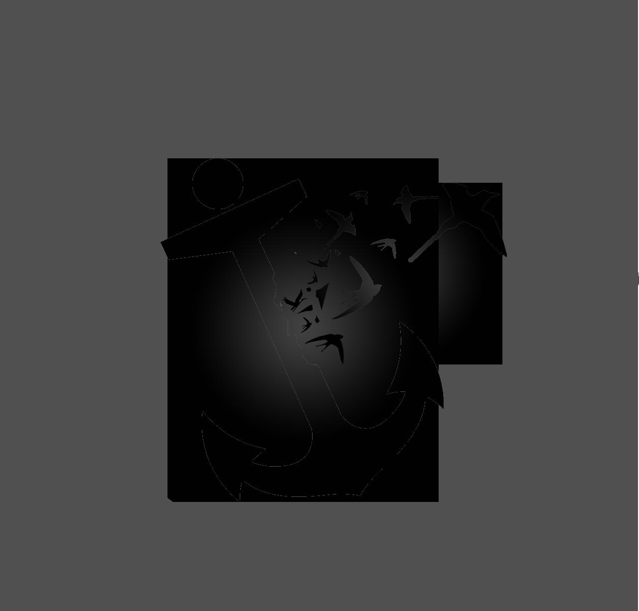 B&Wlogo_broken anchor