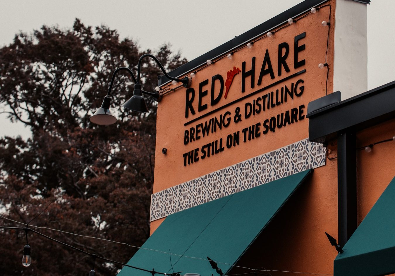 red hare still on the square